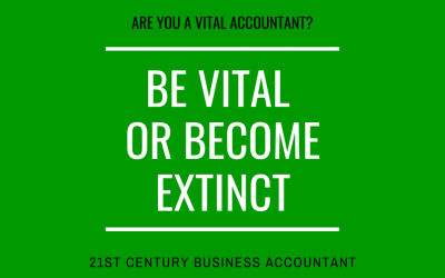 The Vital Role of the Business Accountant